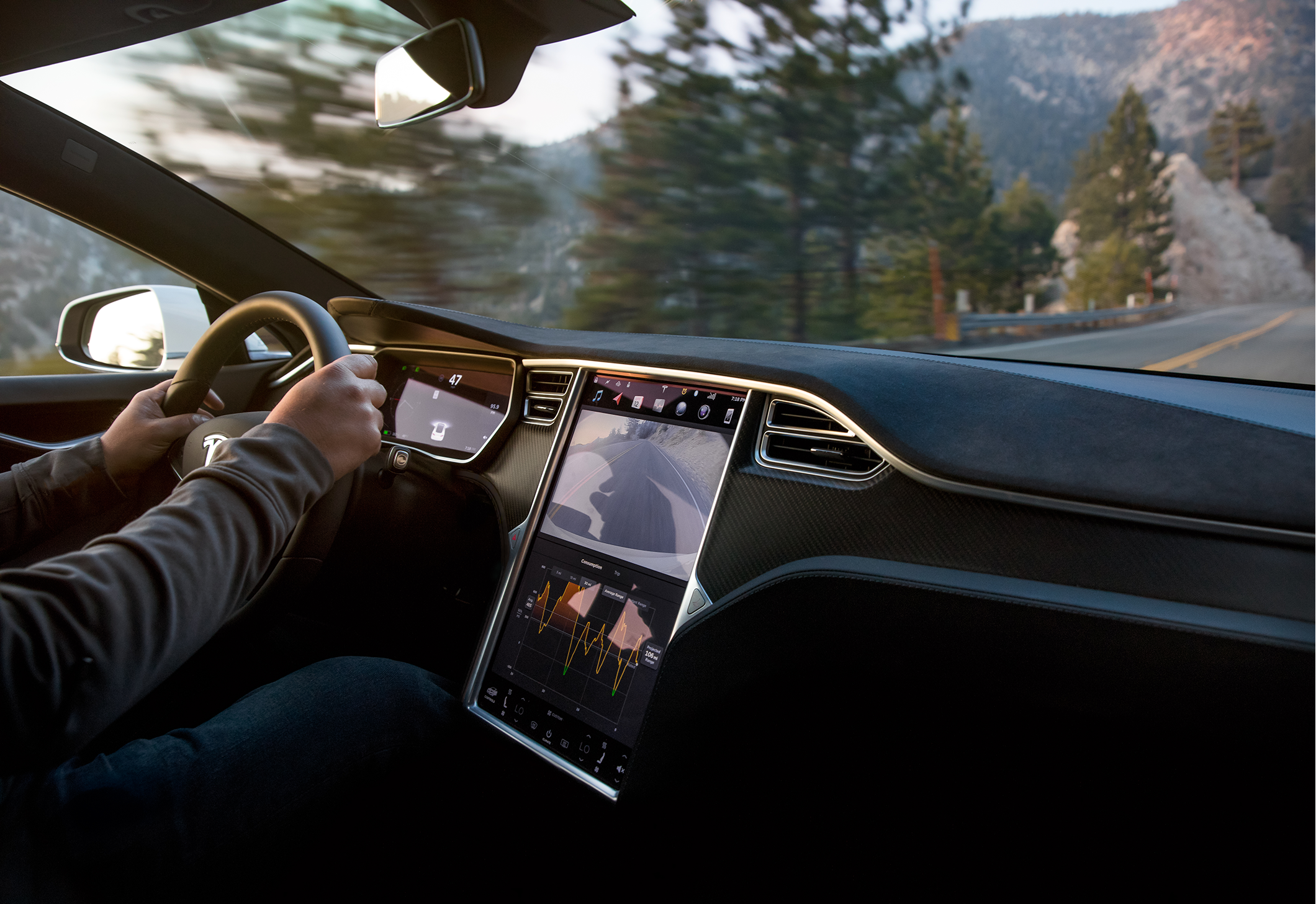 Model S Interior Forest Sunset