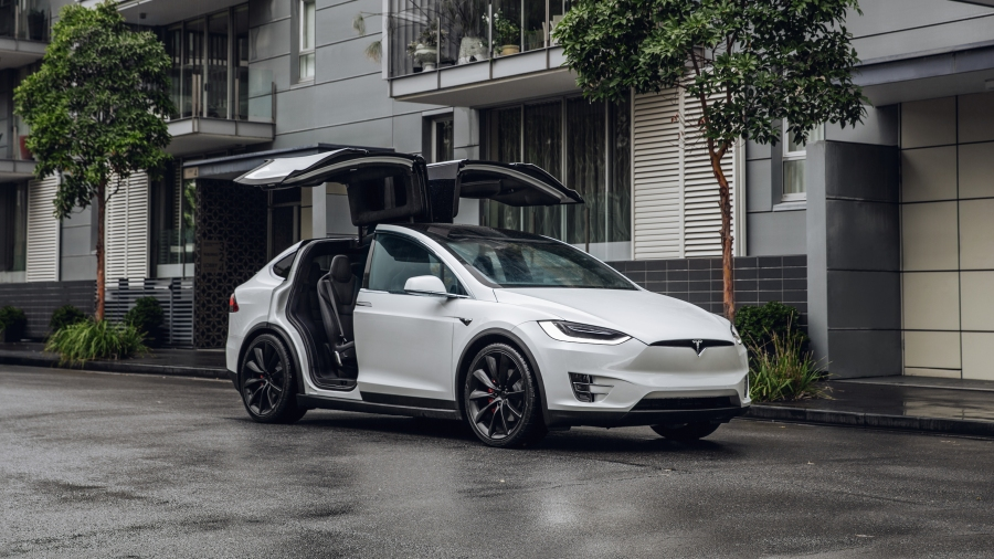 Model X wings open white