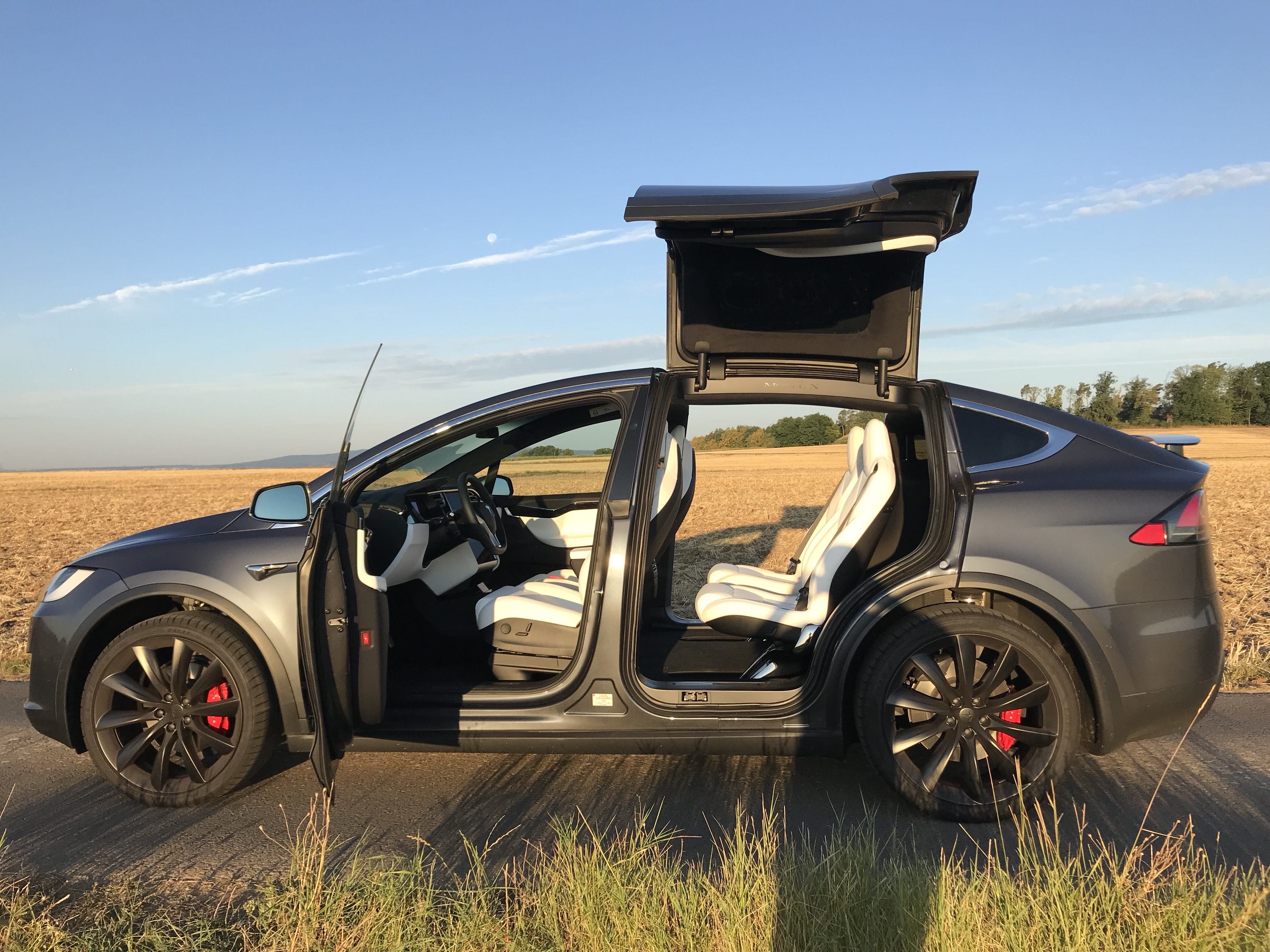 Tesla Model X Side View